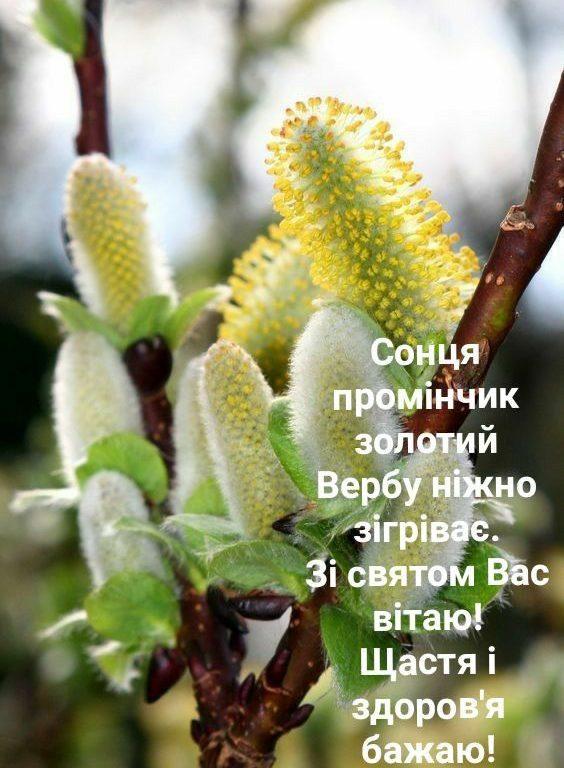 Короткі привітання з Вербною неділею українською