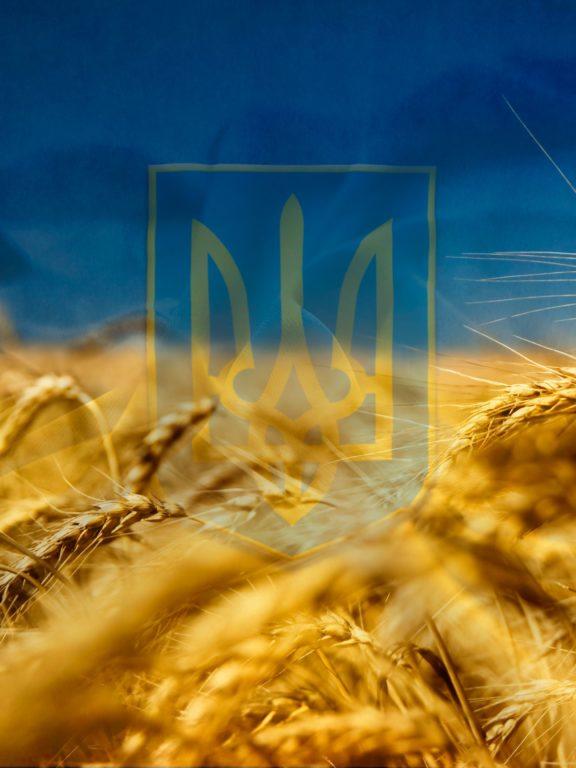 СМС привітання з Днем захисника України у прозі, до сліз